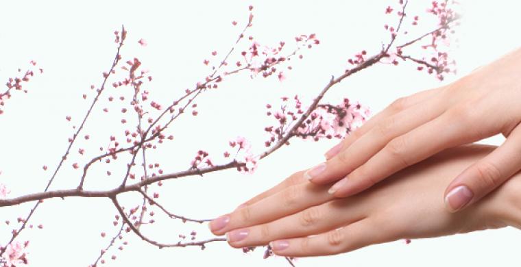 Instytut Zdrowia i Urody Claria Chorzow Lubliniec manicure japonski